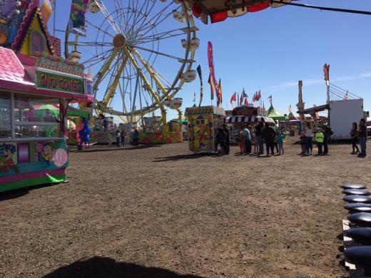 Carnival 11