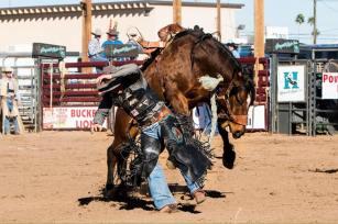 Honeycutt Rodeo Inc.